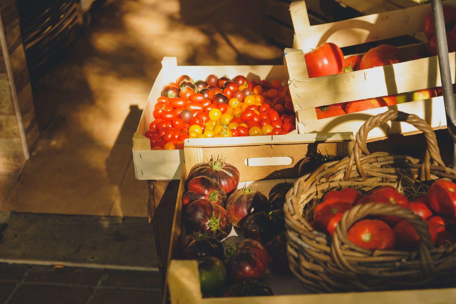 Productos Ecologicos En La Hosteleria